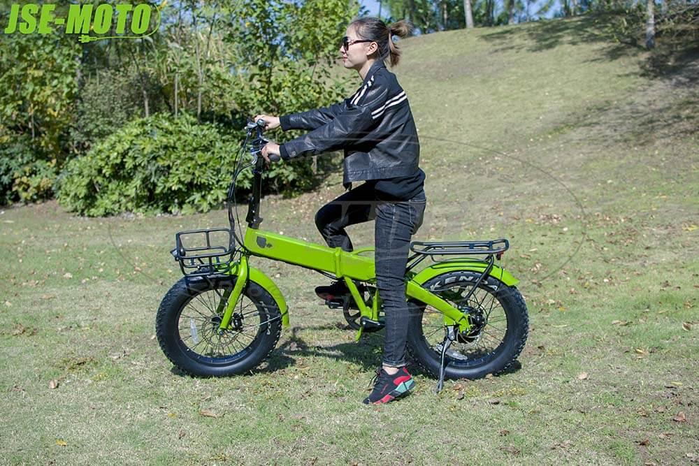 Fat E-bike\Rifle 20'' Battery Hidden Folding Fat E-bike