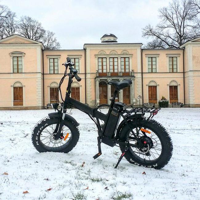 48v-750w-fat-folding-electric-bike-for