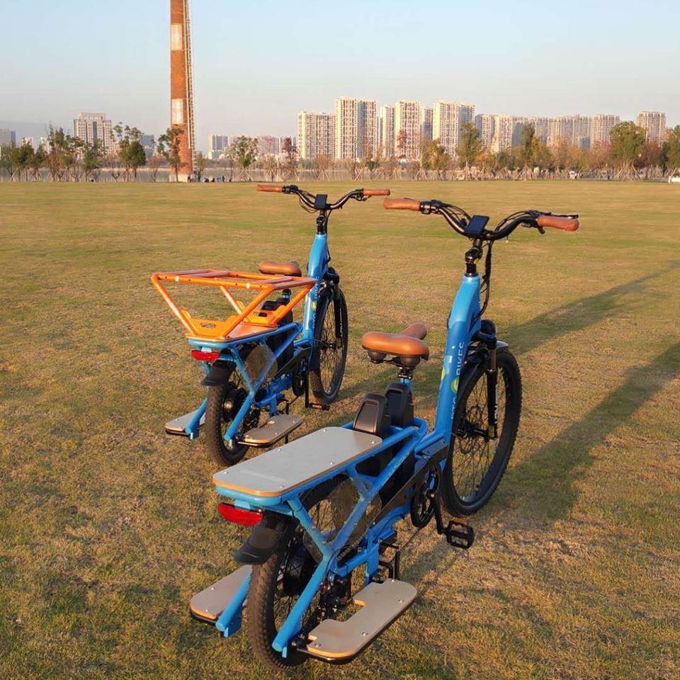 cargo bike (1)