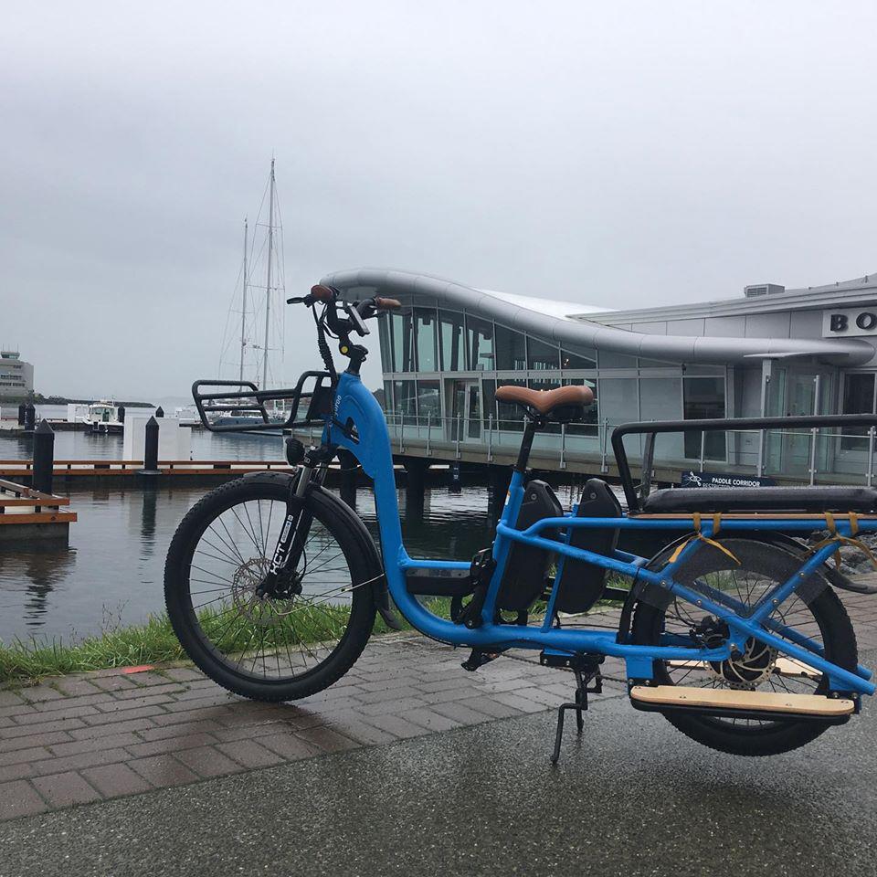 cargo bike (2)