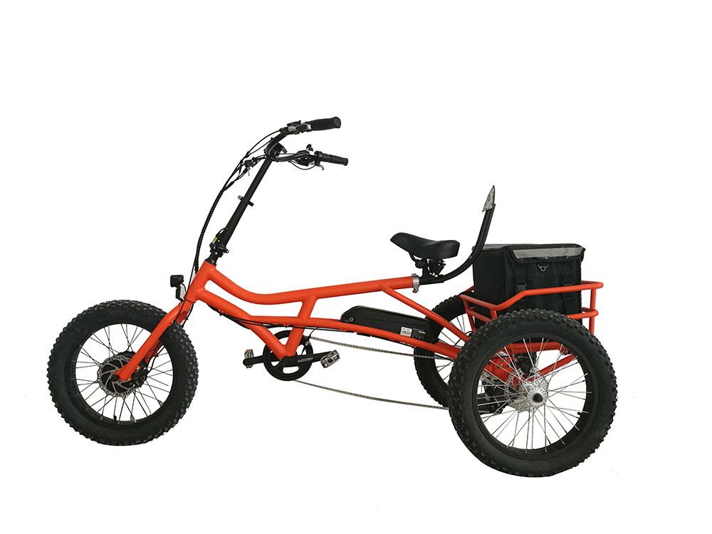 Casual style Rhino 24'' & 20'' Fat E-trike datail